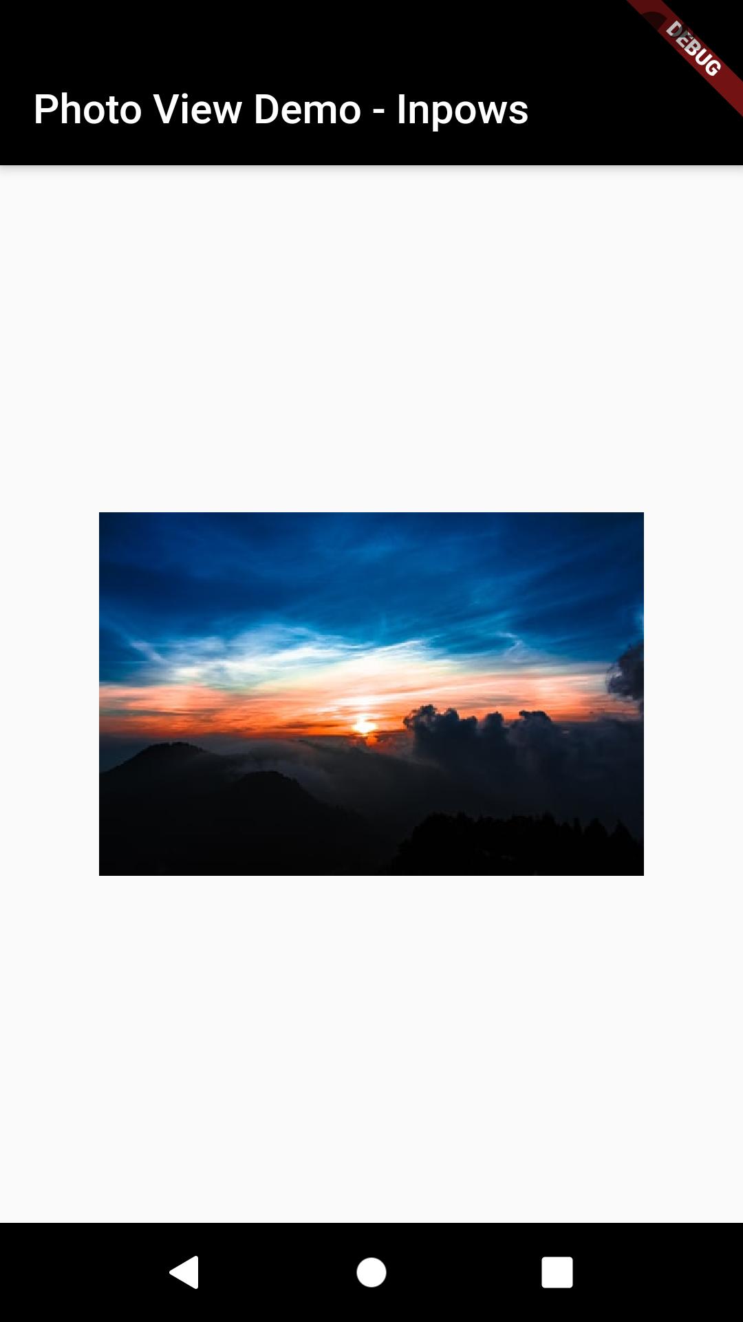Tutorial Membuat PhotoView di Flutter_citra1