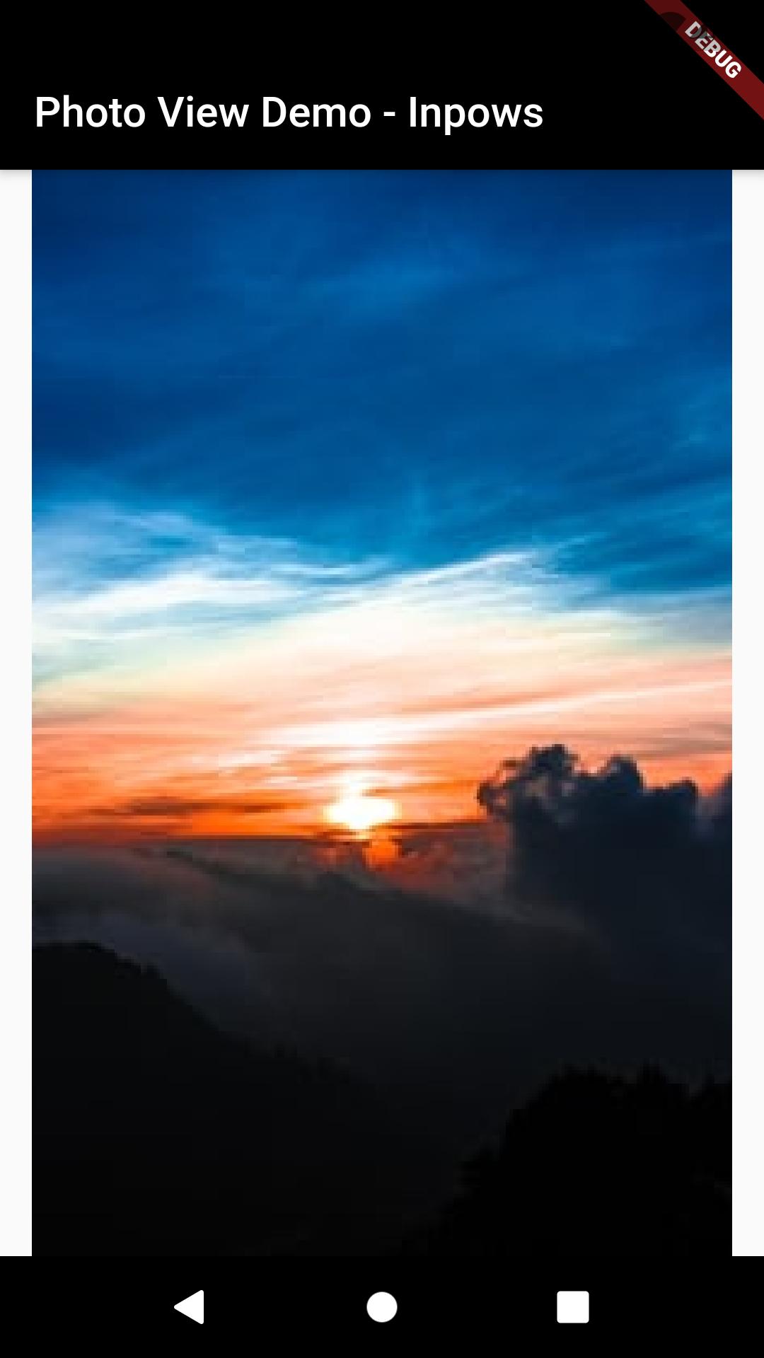 Tutorial Membuat PhotoView di Flutter_citra3
